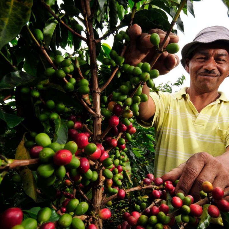 #3 Colombia Supremo Coffee 200g
